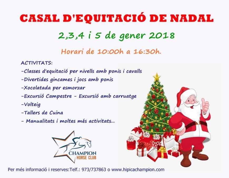 cartell nadal 2018