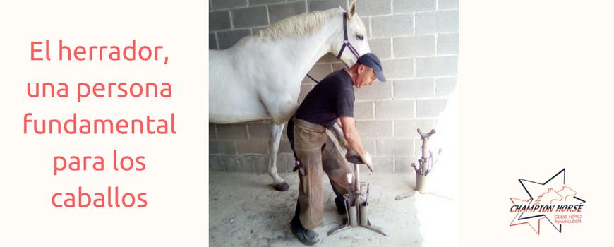 El herrador, una persona fundamental para los caballos