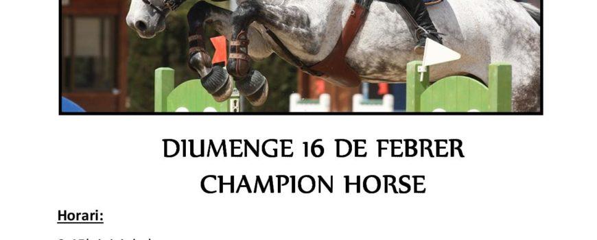 CST CHAMPION HORSE 16 FEBRER